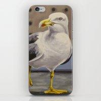 Gull iPhone & iPod Skin