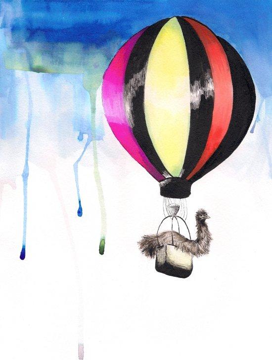 Air Emu Canvas Print