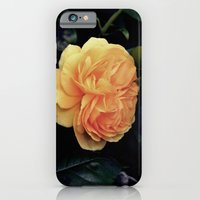 Yellow Rose iPhone 6 Slim Case