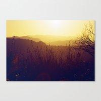 Malibu Wildflowers Canvas Print