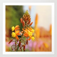 Flower series 03 Art Print