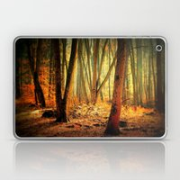 Morgenstimmung Laptop & iPad Skin