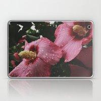 Water Aphrodite  Laptop & iPad Skin