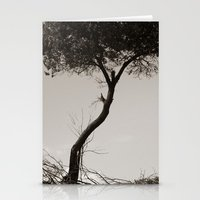 How's the Serenity? Stationery Cards