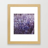 Heavenly Blue Framed Art Print