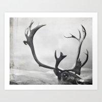 fig. 01 | moose Art Print