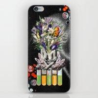 Hay For Brain iPhone & iPod Skin