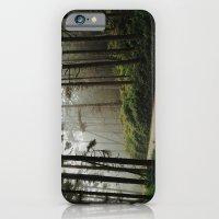 Prairie Creek Road iPhone 6 Slim Case