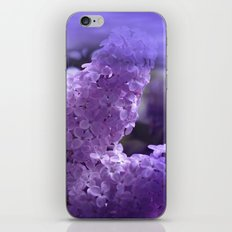 dreaming of lilacs iPhone & iPod Skin