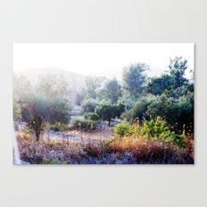 The Bush Canvas Print