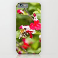 Busy bee in the flowers iPhone 6 Slim Case