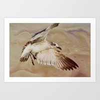 Seagull Swirl Art Print