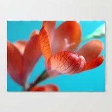 Wild Orange Freesia Canvas Print