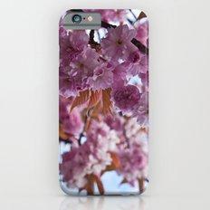 Spring is Near II iPhone 6 Slim Case