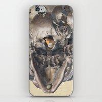 Refuge iPhone & iPod Skin