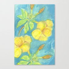 Allamanda Canvas Print