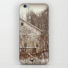 Faded Beauty iPhone & iPod Skin