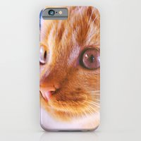 Orange Cat iPhone 6 Slim Case