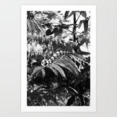 Catipillar Art Print