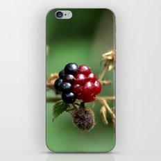 Berry Ripening iPhone & iPod Skin