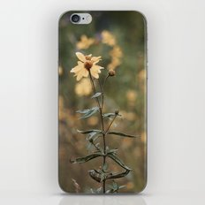 A Moment of Happiness iPhone & iPod Skin
