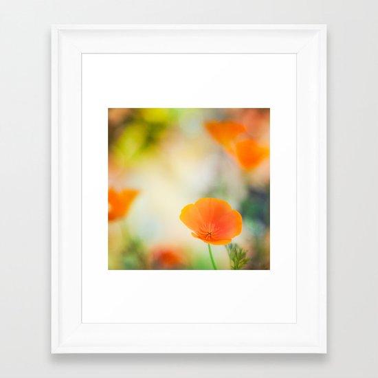 Poppy Rainbow Framed Art Print