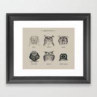 Caffeinated Owls Framed Art Print