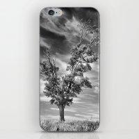 Ethereal Skies iPhone & iPod Skin