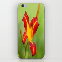Opens With Life iPhone & iPod Skin