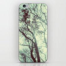 November Day iPhone & iPod Skin