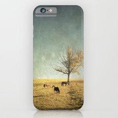 5 horses & a tree Slim Case iPhone 6s
