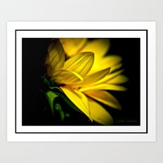 Just a flower Art Print