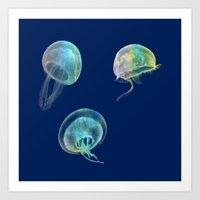jellyfish Art Prints featuring Jellyfish by Vitta