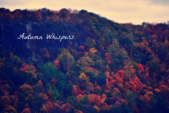 Autumn Whispers Art Print