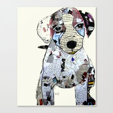jack Russell (dogs  Canvas Print