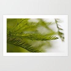Delicate green fronds Art Print