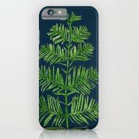 Dawn Redwood iPhone 6 Slim Case