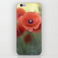 Beautiful Poppy In A Mea… iPhone & iPod Skin
