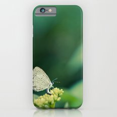Holly Blue iPhone 6 Slim Case