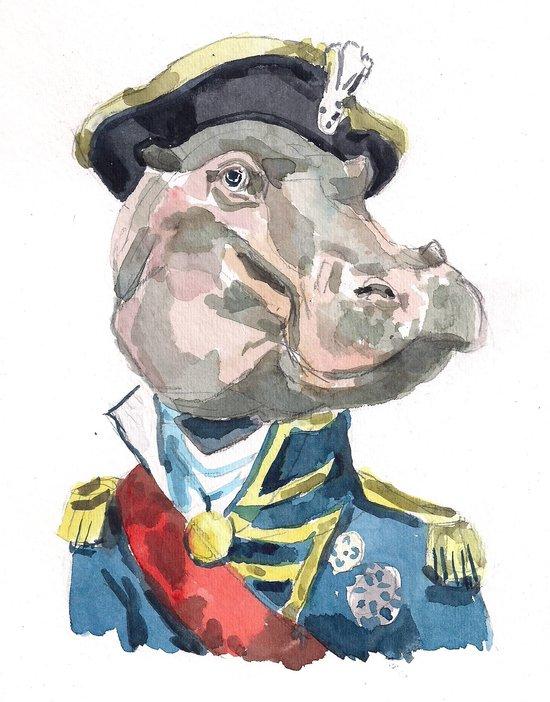 Admiral hippo Canvas Print