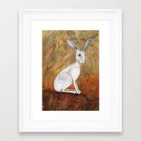 White Hare at Sunset Framed Art Print