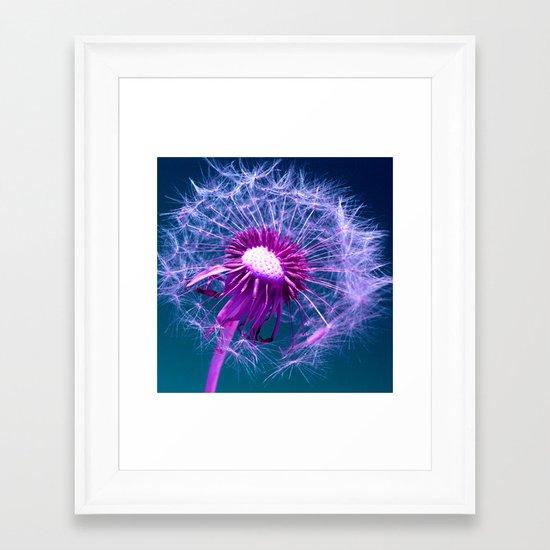 purple dandelion I Framed Art Print