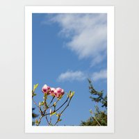Sky flowers Art Print