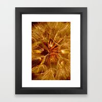 Dandelion Clock Framed Art Print