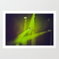 Green Drops Art Print