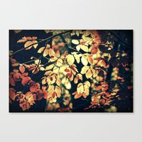 Autumnally  Canvas Print