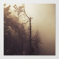 Sunrise Frost And Fog Canvas Print