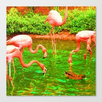 Flaming Flamingo Canvas Print