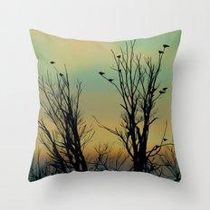 Ombre Sky Throw Pillow