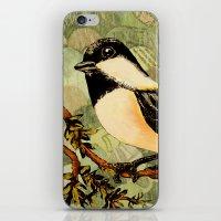 Winged Messenger iPhone & iPod Skin
